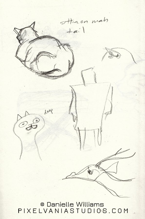 Sketches of random things, but mostly of my cat sitting on his own tail