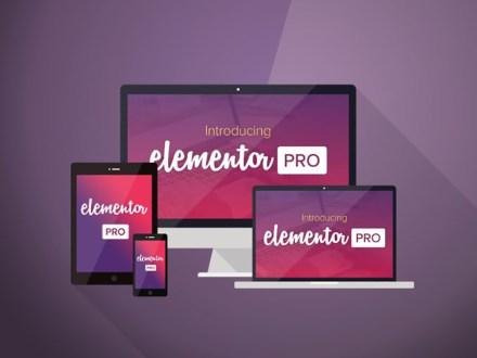 Elementor Page Builder Pro Version