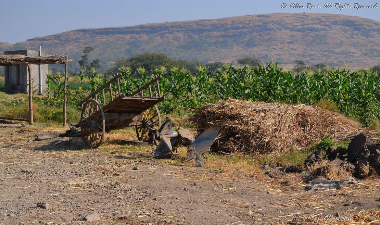 India rural scenery