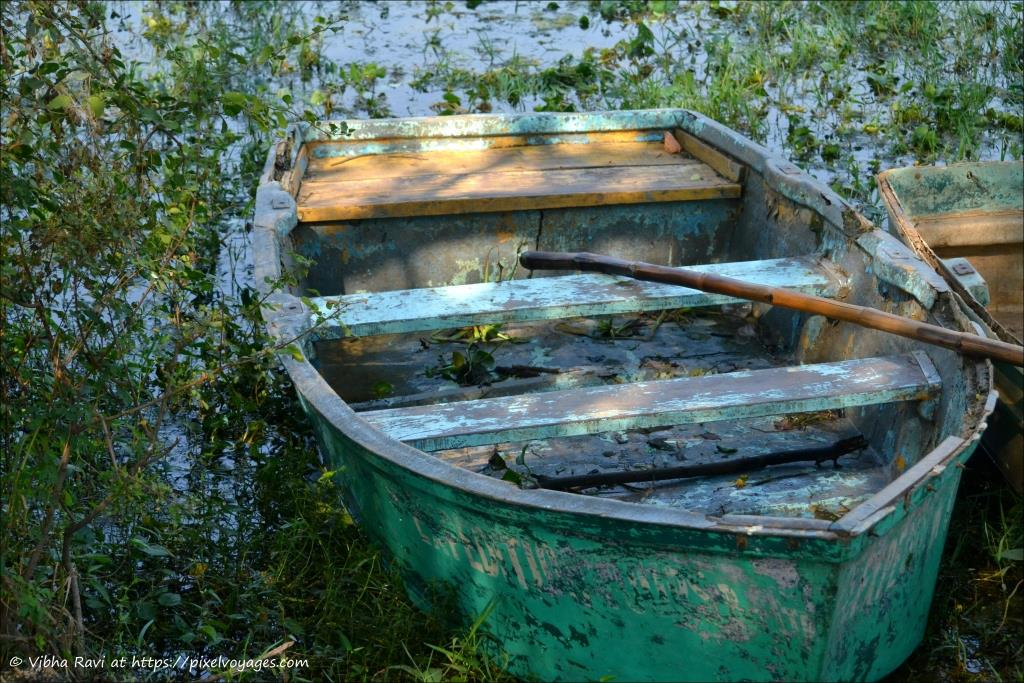 Boat at Bharatpur Bird Sanctuary