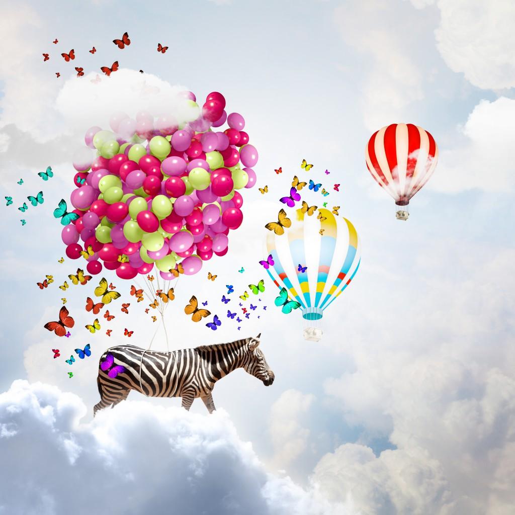 Zebra z balonami - fototapeta PIXERS