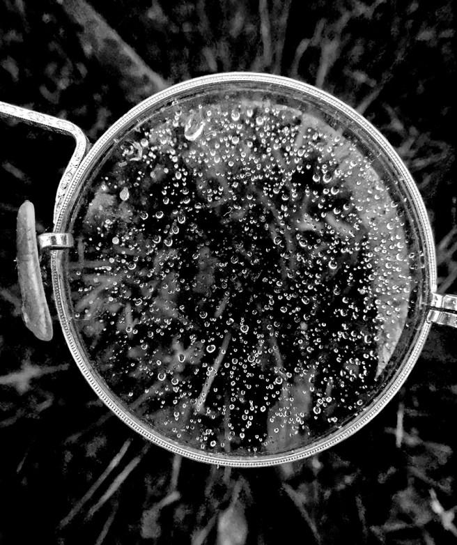 Looking Down_7110
