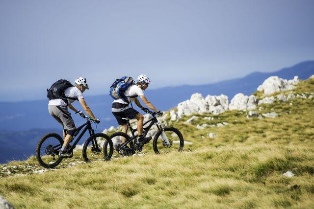 10 Best Mountain Bike Brands