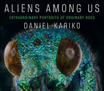 Aliens Among Us: Extraordinary Portraits of Ordinary Bugs