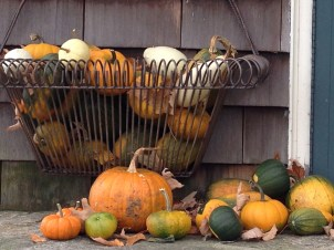 Homegrown pumpkins and gourds 2014