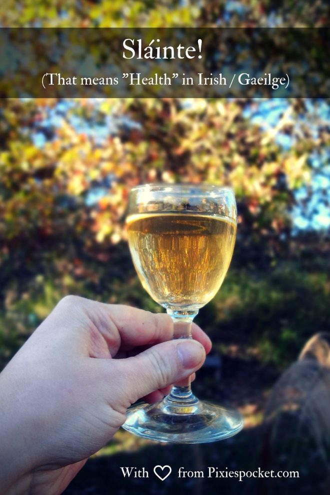 slainte! cheers! from pixiespocket.com (spiced chai wine recipe)