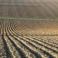 2016-02-08: farming