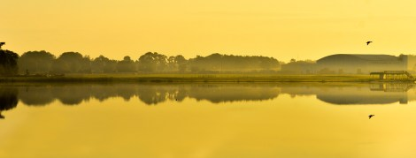 Symmetry - Photo taken by Marylia Garcia of Pixlexia.com. Early December 2013. My favorite time to shoot, early sunrise, the GOLDEN HOUR. Lake Agnes, Polk City, FL