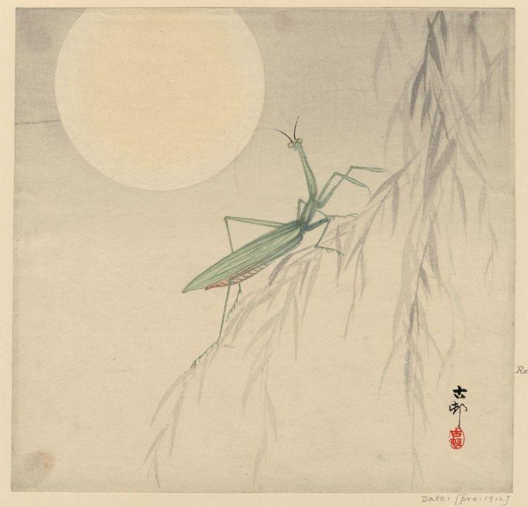 Moon, Ohara Koson