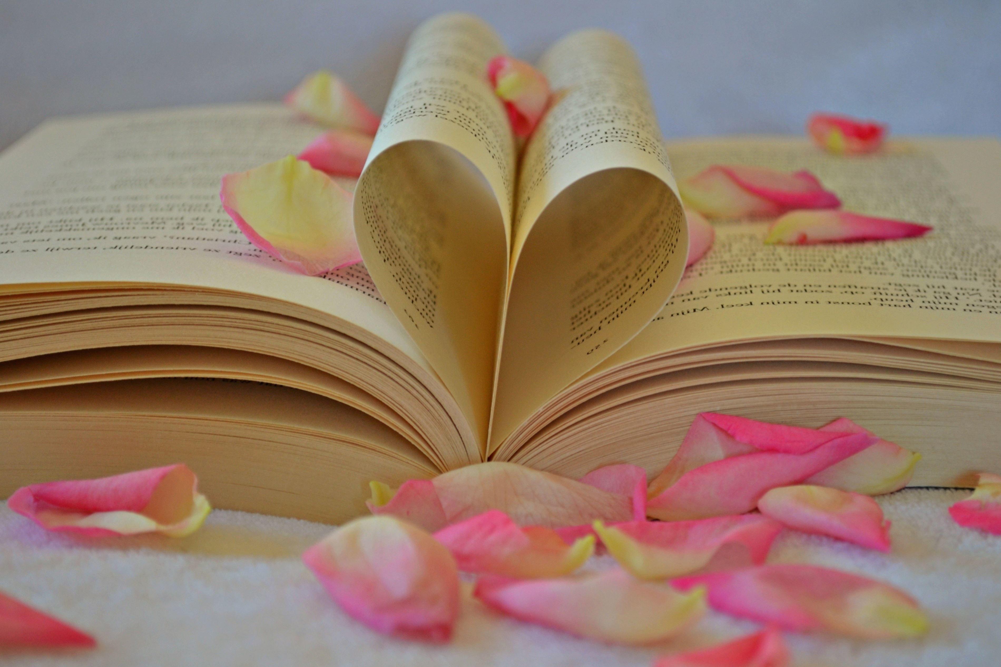 Image Libre Jour Livre Romantique Amour La