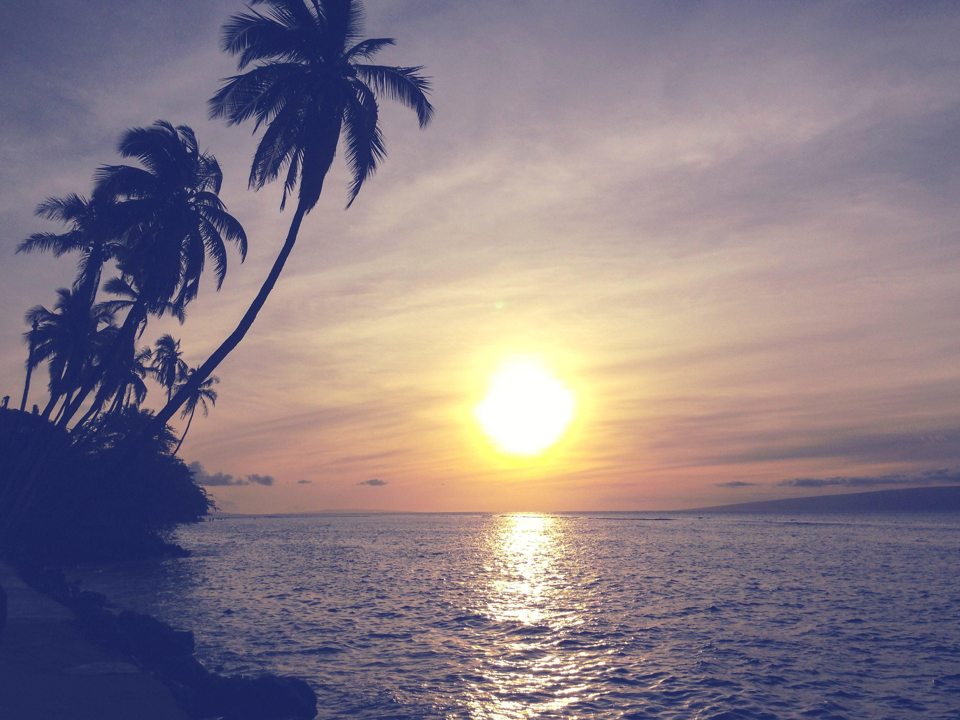 Free Picture Sunset Sun Beach Dawn Ocean Water