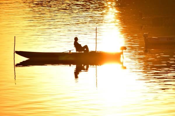 Безкоштовна картинка: рибалка, оливково Лавандово лимонний ...