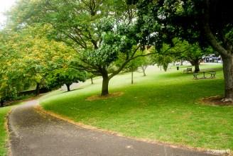 Round the park