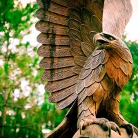 Throwback: Wooden Eagle Sculpture