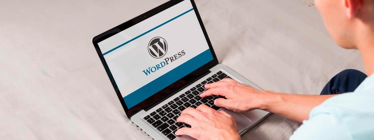 PixoLabo - What Exactly are WordPress Updates