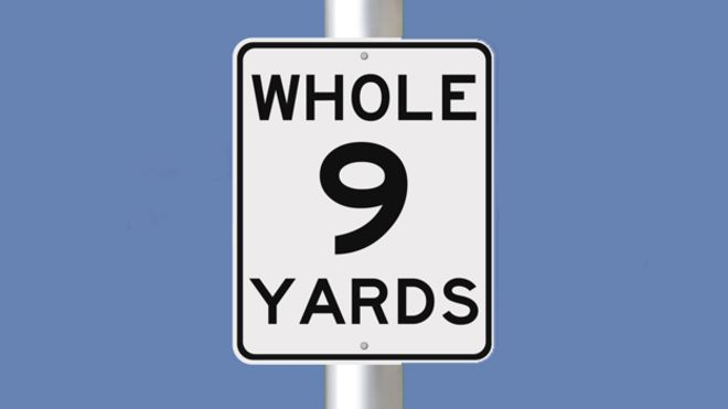 The-Whole-9-Yards