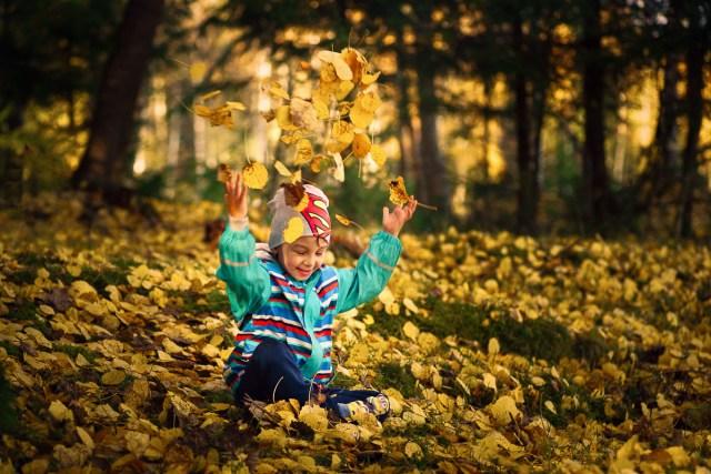 glad pojke sitter bland höstlöv i skogen och kastar upp löven i luften