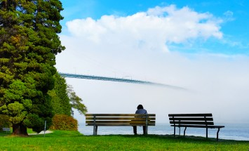 The Fog of Love
