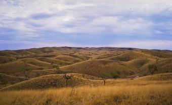 Wide Ochre Land