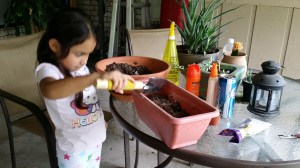 Emily helping me re-pot succulents from Dina's house :)