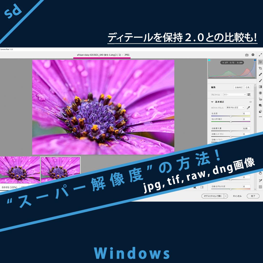 Photoshop【スーパー解像度】jpg,tif,raw,dng画像で「強化」する方法(Windows)「ディテールを保持2.0」比較も!