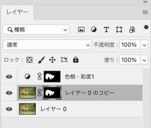 alt(option)を押しながら、マスクのサムネイル画像にドラックすると複製