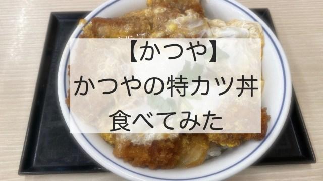 Pork cutlet on rice