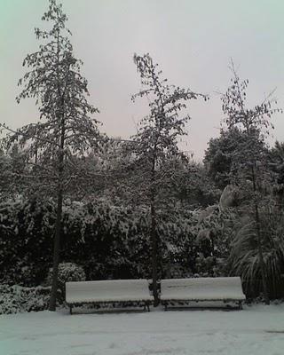 Madrid nevado 4