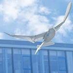 SmartBird : Un robot que vuela como un pájaro