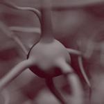 Bosque de neuronas Freestyle en Cycles desenfocado