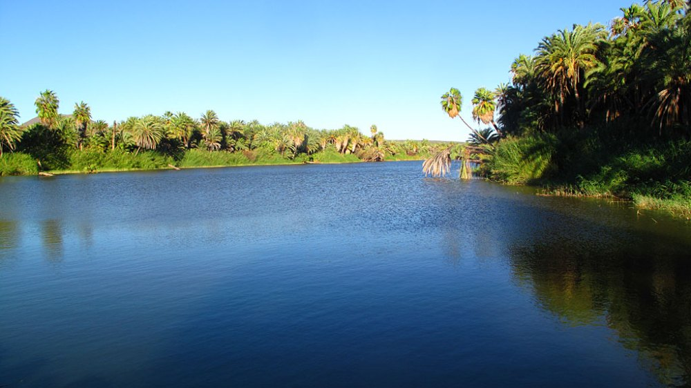 The spring-fed rio at San Ignacio - one of the first things you see driving into town.