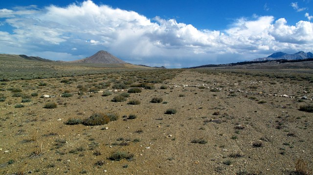An abandoned DOD high elevation landing strip at 11,000' on Coyote Flats.