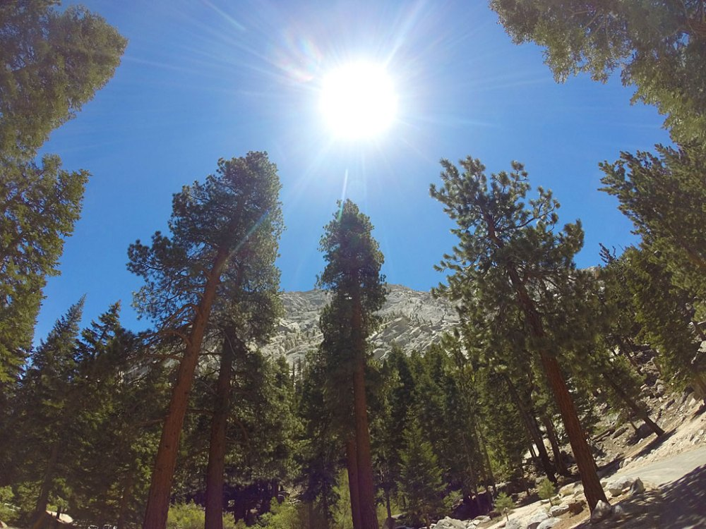 Looking up at the granite walls above Whitney Portal.