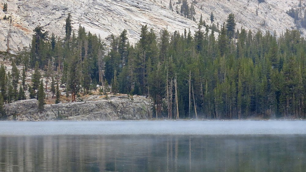 While we were hiking around May Lake, a 2' thick layer of fog formed over one end of the lake, reminiscent of The Crawling Eye.