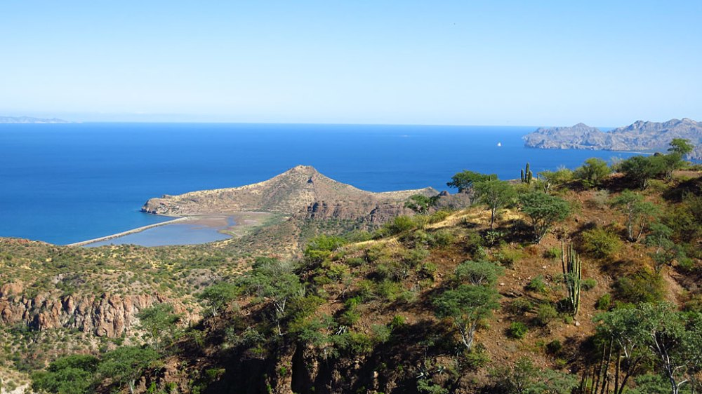 Looking southeast from the Agua Verde Road to Punta San Cosme.