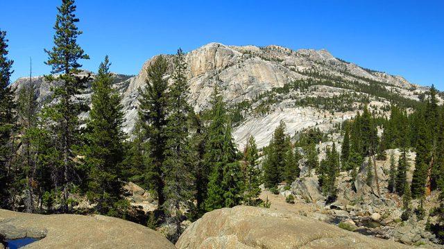 Massive expanses of granite define Yosemite.