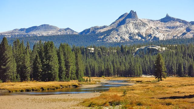 Cathedral Peak at the south end of Tuolumne Meadows.