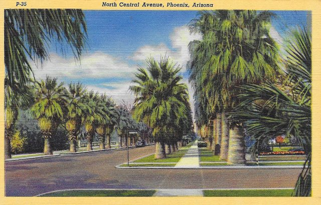 On back: One of the most beautiful drives in the Southwest, is that going out North Central Avenue in Phoenix -- a palm-lined lane, flanked by stately residences and orchards.