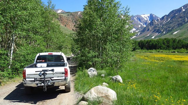 After climbing the moraine at the north end of the valley, the road follows Laurel Creek through a meadow. Spring arrived at 9,000' in July.