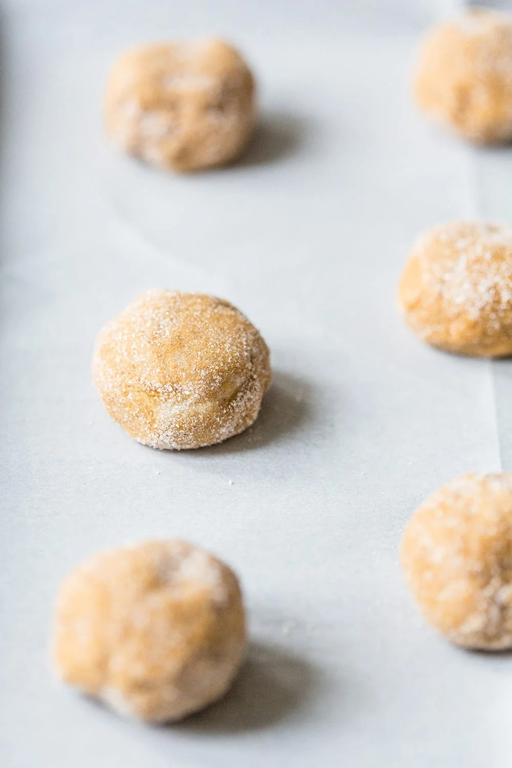 Chewy Molasses Cookies rolled in Sugar