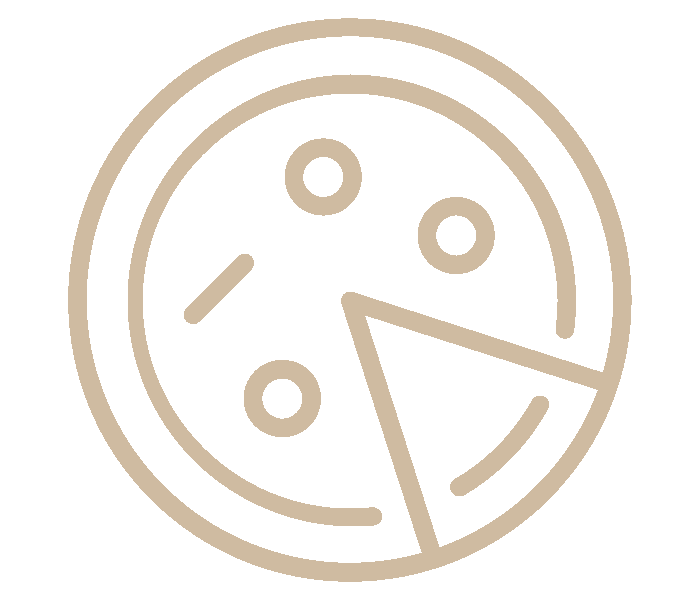Pizzeria Clementito Labarthe-sur-lèze