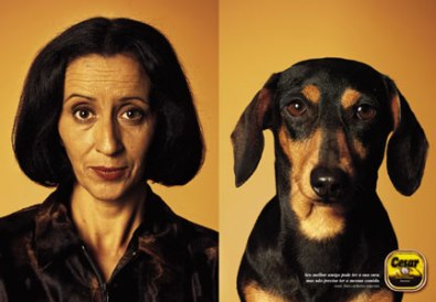 dog_look_alike_jpg_