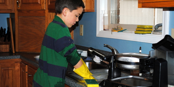 Greyden Washing Dishes
