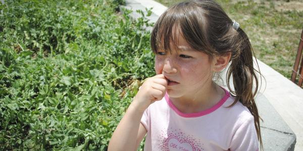 my vegetable garden_blog_31