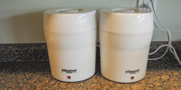 goat milk yogurt_blog_12