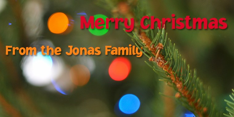 Merry Christmas from Jonas family 2014_blog