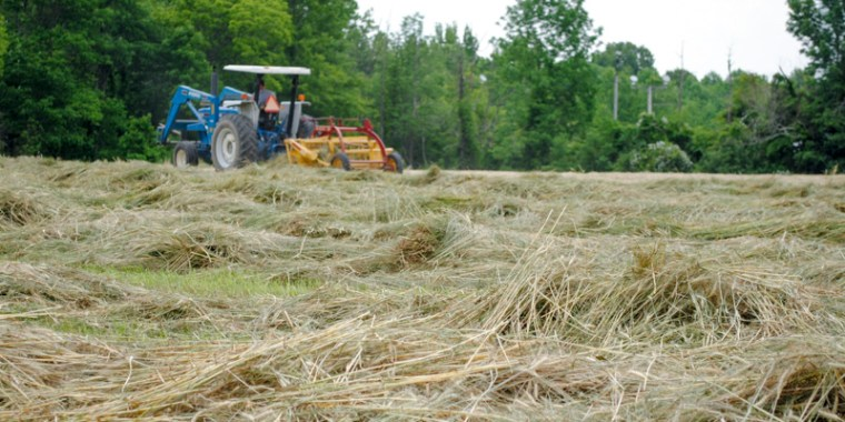 Sometimes The Solution is Simple... and FUN! hay field