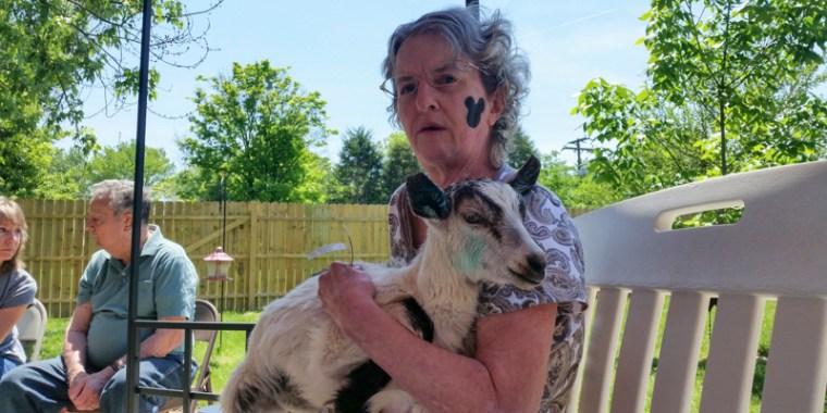 baby goats visiting the nursing home_blog