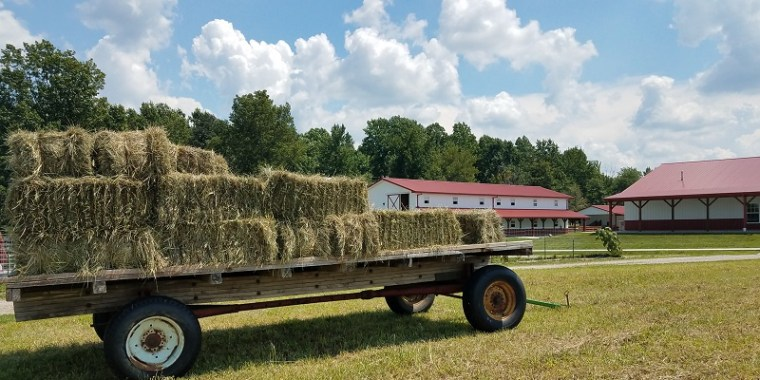 Square Bales on a Hay Wagon