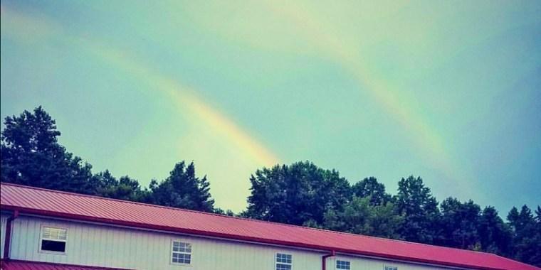 Rainbow after Soaking Hay
